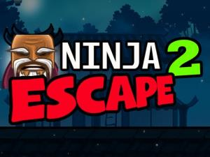 Ninja Escape 2